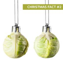 CHRISTMAS FACT #2 Brussel sprouts are an essential item on your Christmas Day dinner and people either love them or hate them. Did you...