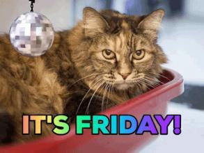 Happy Friday all! #friyay https://t.co/P183o6DDhu