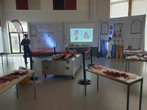 We held the VIVIT Experience live autopsy yesterday and what a fantastic day it was! Don't worry if you missed it - we are holding...