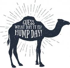 Happy Humpday! Unsure what to do with your future? Well don't panic. Have a look at our website and see what we have to offer today...