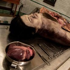 Live Autopsy returns for October Half Term